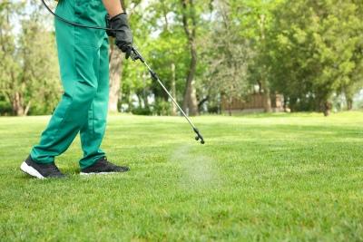 lawn pest control Melbourne